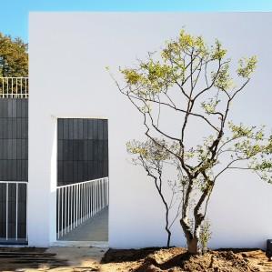 OO주택정원 설계 및 시공 (가을공사)